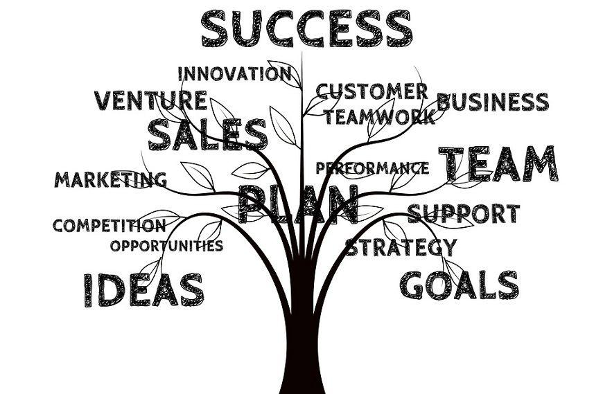 uspeh u poslu strategija